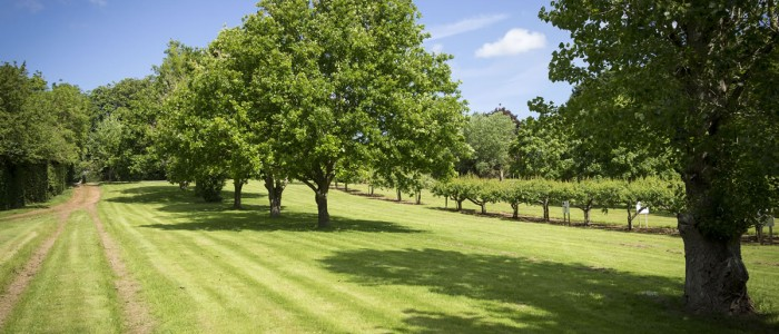 Hollow Meadow Caravan Club Certificated Location near Warwick and Stratford upon Avon
